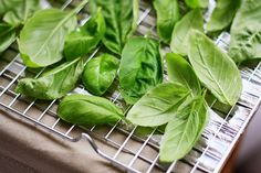 Did you know that Basil is a super food? It's a great source of protein as well as vitamins A, C, E, K and Basil is also full of iron, which is vital for keeping your energy levels up. Freezing Basil, Freezing Fresh Herbs, Basil Recipes, Basil Leaves, Canning Recipes, Freezer Meals, Freezer Cooking, Food Hacks, Food Tips