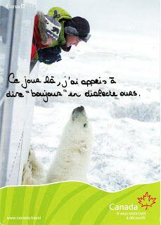 La Caborne de l'Ourse...: février 2009