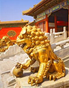 Golden Lions, The Forbidden City - Ancient Chinese Emperor's Palace, Beijing, People's Republic of China