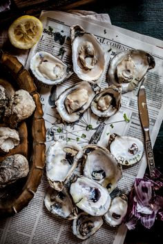 Grilled Oysters on the Half Shell with Grilled Prosciutto & Mignonette | Adventures in Cooking