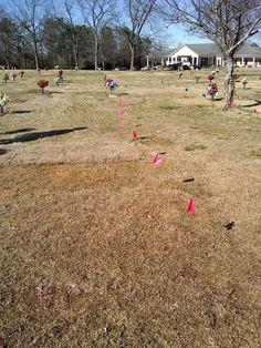 6 Single Grave Spaces for Sale $2500ea! Georgia Memorial Park Garden of Unity Marietta, GA The Cemetery Exchange 20-0705-9