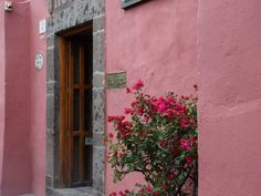 Gorgeous shots from a cute courtyard in Mexico.