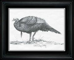 """Terry Redlin """"""""Turkey"""""""" Pencil Sketch-Framed"""
