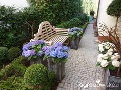 Wiosenne dekoracje i kompozycje w donicach - Forum ogrodnicze - Ogrodowisko