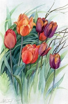 House Remodeling Is Residence Improvement Anne Marie Patry-Belluteau Art Art Floral, Floral Drawing, Tulip Painting, Watercolour Painting, Painting & Drawing, Watercolors, Watercolor Cards, Watercolor Flowers, Botanical Art