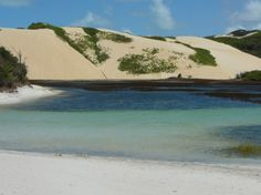 Praia da Pipa, no Rio Grande do Norte, guarda surpresas sensacionais pra sua viagem. Confira!