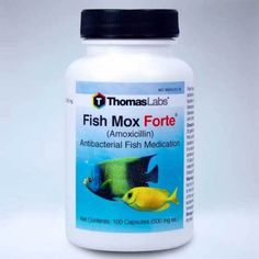 This is now available in our store: Fish Fin Mox Fort.... Check it out here! http://www.relguard.com/products/fish-fin-mox-forte-500mg-100-capsules-new-aquarium-water-treatments?utm_campaign=social_autopilot&utm_source=pin&utm_medium=pin