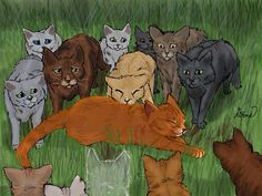 The Death of Firestar.... SO SAD!!! I cried at this part... )': He was my VERY FAVORITE cat out of all the warriors, and the best.