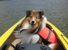 Canoeing with Dad