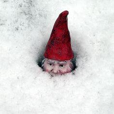 Snow Gnome by VisioLuxus, via Flickr