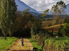 Walking the cats | Painting Holidays Italy