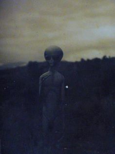 Scientist says Aliens in UFOs might be Earthlings from the Future - Aliens are Humans Aliens And Ufos, Ancient Aliens, Chien Golden Retriver, Alien Aesthetic, Space Aliens, Alien Art, Bizarre, Area 51, Arte Horror