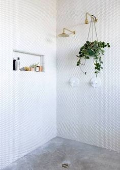 Home Decor Inspiration .Home Decor Inspiration Concrete Shower, Concrete Floors, Bathroom Concrete Floor, Concrete Ceiling, Taking Cold Showers, Texas Homes, Celebrity Houses, Reno, Small Bathroom