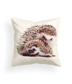 """Baby Hedgehog Print Accent Decorative Throw Pillow Cover 100% Cotton Throw Pillow Cover Cushion 16 x 16"""" Baby Porcupine Cushion Cover http://www.amazon.com/dp/B00UATXY86/ref=cm_sw_r_pi_dp_Yegfvb1J8FT7A"""