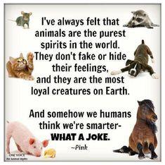 Love animals! Career goals!