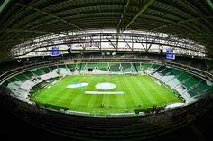 Veja fotos de Palmeiras x Sport pelo Campeonato Brasileiro 2014