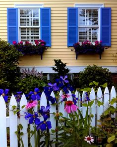 Blue and Yellow New England Cottage ~ Original Colour Photograph by Suzanne MacCrone Rogers