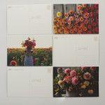 Floret Postcards - Floret Flowers