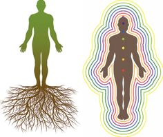 Grounding Visualization: Anchoring Tree Roots Visualization