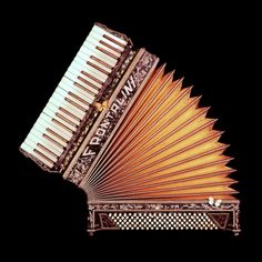 'Archived Miscellanea' Accordion, natalie tkachuk. Photography. Make a statement with a large scale print.