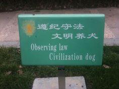 Hilarious Translation Fails - Likes