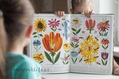 MK Life: knihovnička | Včely - další velkoformátovka