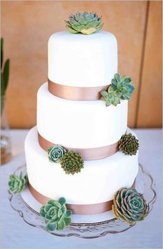 White/ivory cake with brown ribbon and succulents, also wanted to show you a new amazing weight loss product sponsored by Pinterest! It worked for me and I didnt even change my diet! I lost like 16 pounds. Here is where I got it from cutsix.com