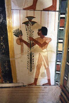 tumba de Menna TT69 , Sheikh abd el-Qurna , Luxor , Valle de los Nobles .Escriba Menna , Reinado de Tutmosis IV ?  | by Soloegipto