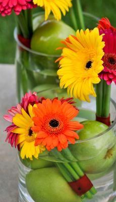 Gerbera Daisy Centerpieces - DIY Wedding Centerpieces and Ideas! Gerbera Daisy Centerpieces - DIY We Spring Wedding Centerpieces, Floral Centerpieces, Table Centerpieces, Floral Arrangements, Flower Arrangement, Centerpiece Ideas, Graduation Centerpiece, Quinceanera Centerpieces, Diy Flowers
