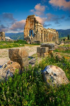 Exterior of the Basilica at Volubilis, early 3rd century AD: It is one of the finest Roman basilicas in Africa near Meknes, Morocco.