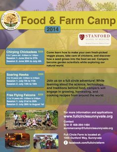 Santa Clara, CA Lots of growing, games, learning, and cooking for children ages 5-14, June and July.  Click & zoom flyer for camp dates & topics.  www.fullcirclesunnyvale.org Click flyer for more >>