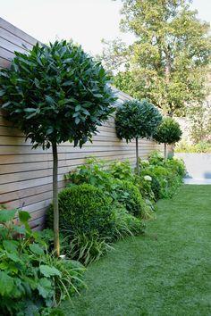 Balham, Londres - Jardines Tom Howard - #balham #howard #jardines #londres
