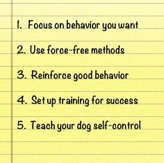 6. Always end a training session on a positive note. 7. Help your dog be right. 8.Make training fun for you and your dog. 9. Be patient with yourself and your dog. 10. If you are upset, frustrated...do not train your dog.