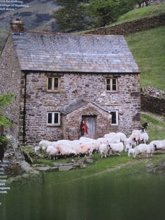 Lovely country house amongst sheep
