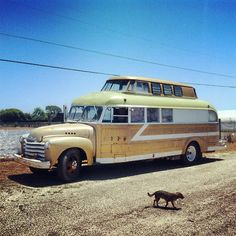DIY Mobile Homes Handcrafted Bus 1