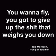 Fly - quote. I needed that.