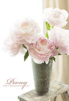 今年も芍薬を・・・♪ 今年は、あわ~いピンクのものを飾りました。一気に咲く芍薬、一日の数時間でこの状態に…^^ 芍薬を飾る時はいつも出て...