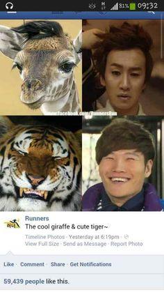 Running man gwang soo jong kok tiger giraffe