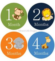 Selva animales mensuales pegatinas bebé hito pegatinas
