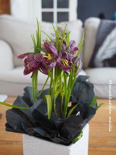 Flowers, blommor, kukkia