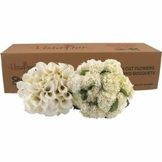 Costco flowers: Combo Box Callas, Hydrangeas and more. I think these pre-ordered flowers cost less than what I paid at wholesale flower market  Wedding Centerpieces, Wedding Bouquets, Wedding Flowers, Bridesmaid Bouquets, Bridesmaids, Calla Lillies, Calla Lily, Hydrangea Colors, Hydrangeas