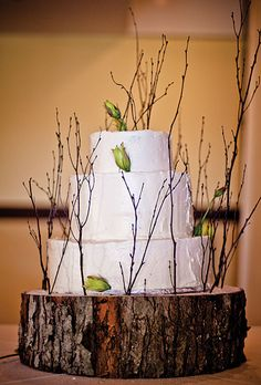 Nature-inspired wedding cake decorated with rosebuds and twigs, and displayed on a stand made from a real tree stump. Rebekah J. Murray Photography.