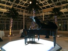 Black Blüthner grand piano set up and lights on at #Heineken corporate event London