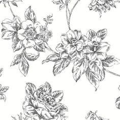 12-034-31cm-Wallpaper-SAMPLE-Black-and-White-Vintage-Floral-Norwall-BW28706