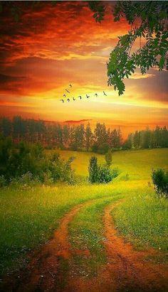 Beautiful Sunset, Beautiful World, Beautiful Images, Beautiful Morning, Beautiful Scenery, Beautiful Things, All Nature, Amazing Nature, Landscape Photography