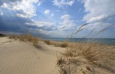 Doherty Images: Photos from Indiana Dunes National Lakeshore