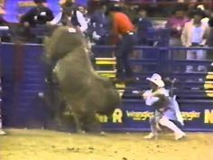 1987 world champion bull rider Lane Frost rides a bull during round 10 at the 1987 National Finals Rodeo. Lane Frost, Team Roper, Nascar Cars, Real Cowboys, Bull Riders, Great Life, Hair Raising, Wakeboarding, Country Girls