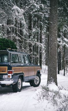 woody wagoneer in the winter doesn't get much more classic.