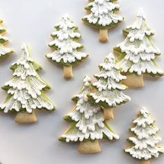 "Mini pine forest headed your way Perfect tree for my gingerbread house's yard. ""Mini pine forest headed your way Perfect tree for my gingerbread Christmas Treats To Make, Christmas Sugar Cookies, Christmas Sweets, Christmas Cooking, Noel Christmas, Christmas Goodies, Holiday Cookies, Simple Christmas, Decorated Christmas Cookies"