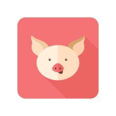 pig flat illustrations - Google Search